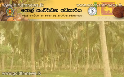 Lanka+posts+Rs+46%2C653+mn+income+from+coconut+exports