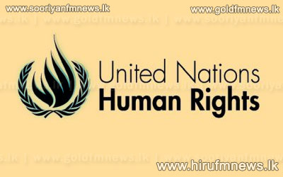 Resolution+at+UNHRC+a+result+of+the+Government%27s+actions%3B+UNP