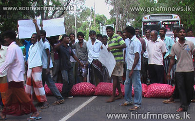 Potato+farmers+stage+protest+++
