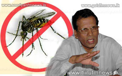 11%2C000+dengue+patients+reported