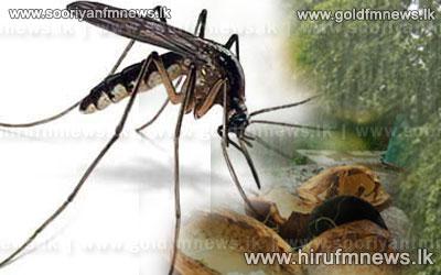 Schools+given+deadlines+for+eradication+of+dengue