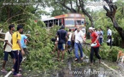 Traffic+hindered+due+to+uprooted+trees+as+a+result+of+strong+winds