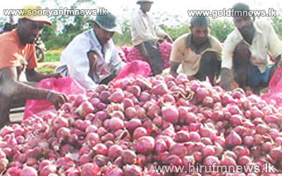 Import+tax+on+Big+Onion+increased+by+100+percent.