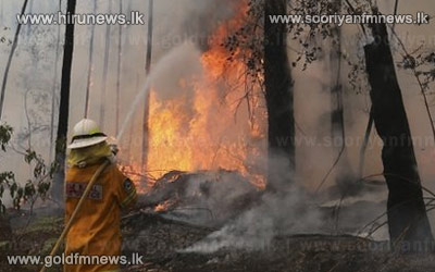 Australia+fire+crews+face+extreme+weather+in+NSW++++++