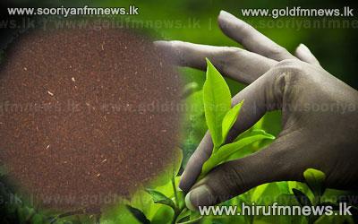 Sri+Lanka+achieves+record+tea+exports