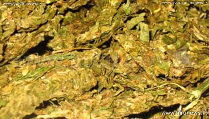 102+kg+of+Kerala+Marijuana+nabbed