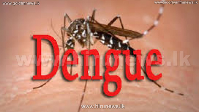 Over+54%25+Schools+Have+Dengue+Breeding+Sites
