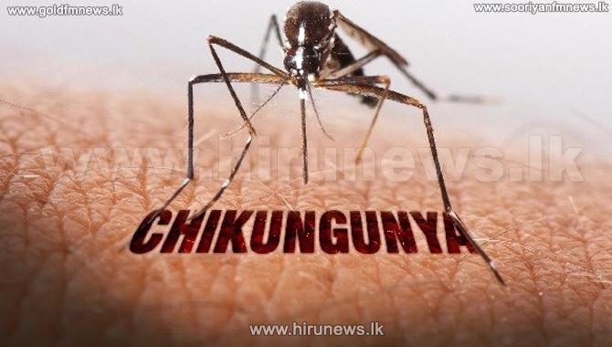 Chikungunya%2C+dengue+toll+in+Delhi+climbs+to+30
