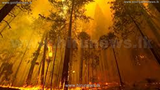 Badulla+wildfire+doused+