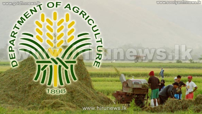 Prepare+for+rains-+Agriculture+Department+urges+farmers