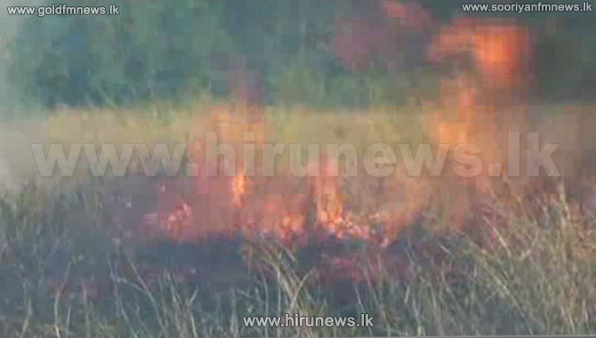 Wildfires+break+out+in+Hungama+and+Habarana+