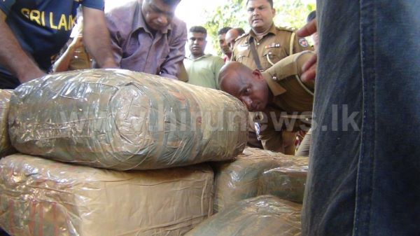 Vital+information+regarding+Ganja+racket+in+the+North+revealed%3B+Another+73kg+of+Ganja+found+from+Mullaitivu
