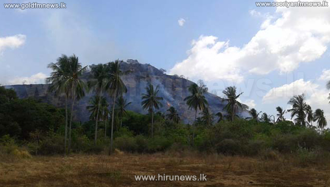 200+acres+destroyed+in+wildfire+in+Monaragala+