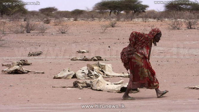 Four+famines+mean+20+million+may+starve+in+the+next+six+months