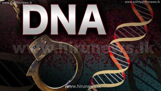 %E0%B7%83%E0%B7%84%E0%B6%BB%E0%B7%8F%E0%B6%B1%E0%B7%8A+%E0%B7%84%E0%B7%82%E0%B7%93%E0%B6%B8%E0%B7%8A%E0%B6%9C%E0%B7%9A+DNA+%E0%B7%80%E0%B7%8F%E0%B6%BB%E0%B7%8A%E0%B6%AD%E0%B7%8F%E0%B7%80+%E0%B6%85%E0%B6%9F%E0%B7%84%E0%B6%BB%E0%B7%94%E0%B7%80%E0%B7%8F%E0%B6%AF%E0%B7%8F