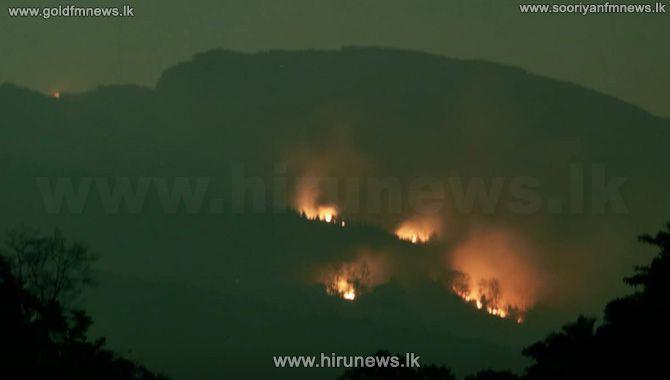 Be+vigilant+regarding+fires+in+forest+reserves%3B+no+rains+predicted+till+mid+march+say+met+department.