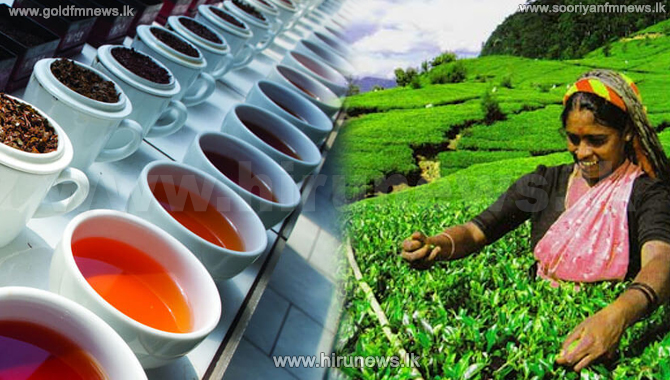 Tea prices increase in May