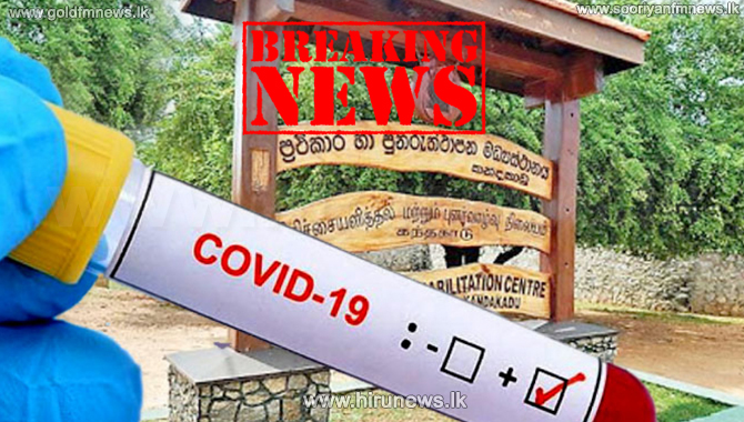 196 more tested positive for Covid-19 at the Kandakadu Rehabilitation Center (Video)