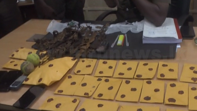 15 arrested for attempting to throw parcels of drugs to the Kalutara Prison (Video)
