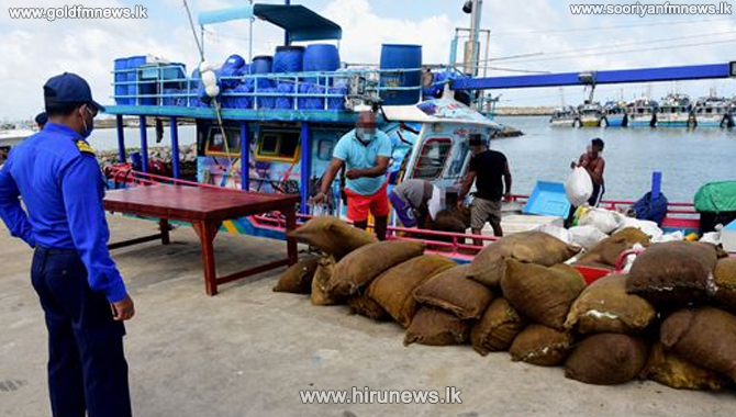 Navy seizes 6,000 kgs of turmeric off Chilaw