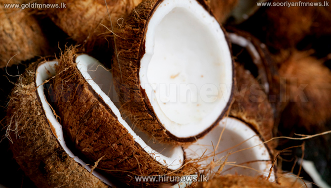 Coconut to be sold at Rs. 60 concessionary price