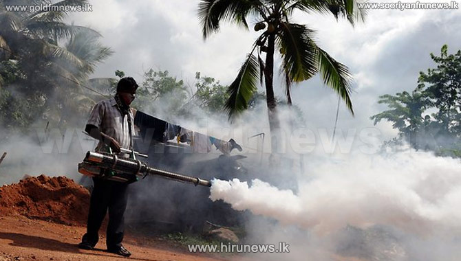 30 deaths of dengue patients this year