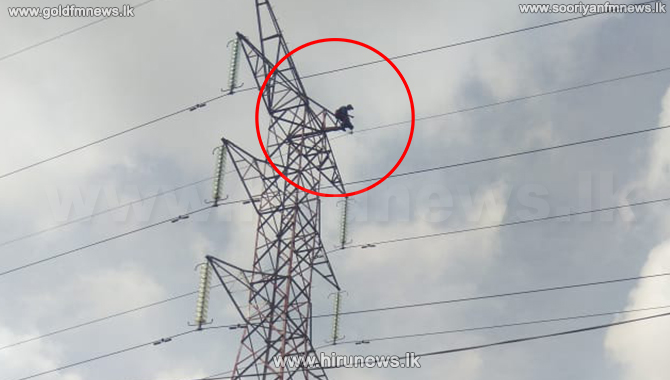 Man protests on a high voltage post in Wellampitiya (Video)
