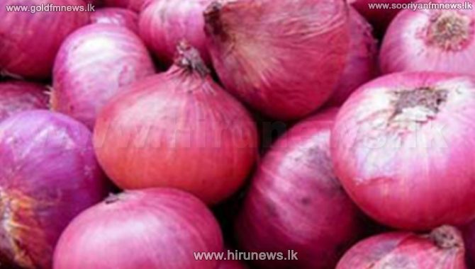 Big onions sold at Rs 150 in Dambulla - farmers relived