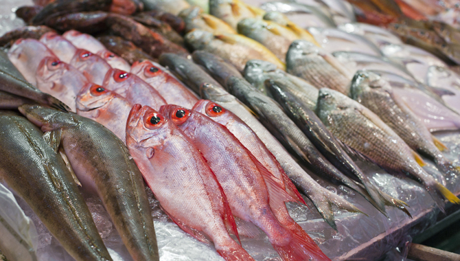 No risk in consuming fish well-cooked – Health Ministry (video)