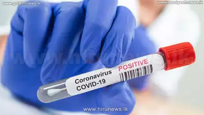 Another 208 COVID patients identified