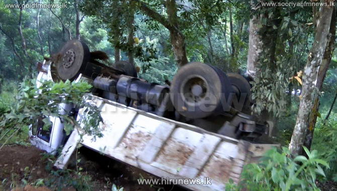 Tipper truck on to a jackfruit tree (video)