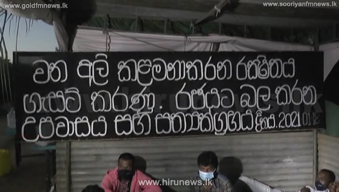 Human-elephant conflict: State Minister request to end Sooriyawewa deadly fast