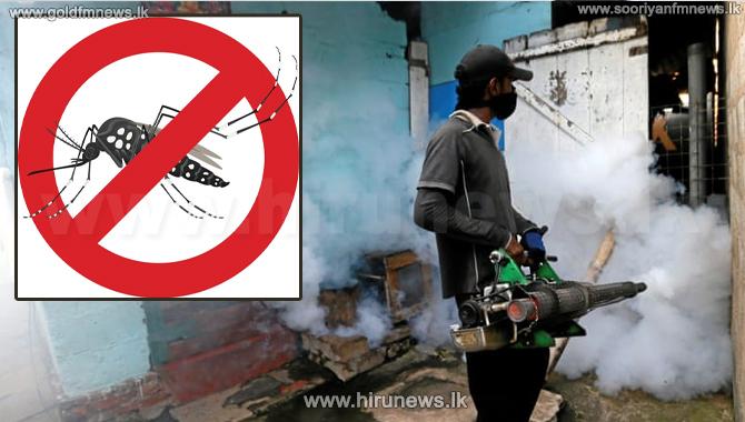 Dengue+numbers+decrease+as+COVID+numbers+increase