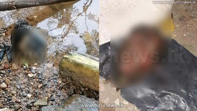 Decomposed head located in Matara