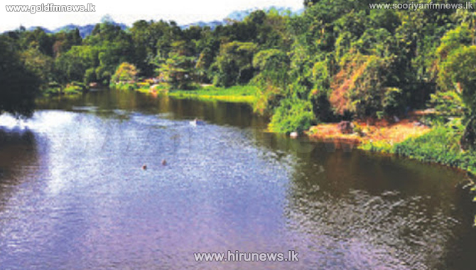 13 persons rescued from Hinganga (Video)