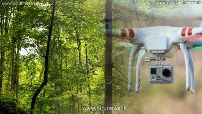 Drone tech to be utilized against forest destructions