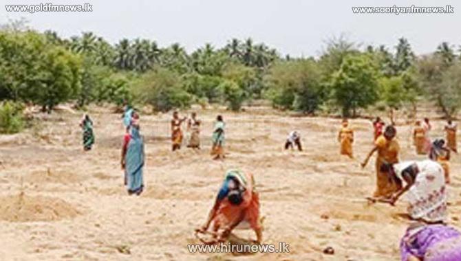 நடிகர் விவேக் நினைவாக பாலாற்றுப்படுக்கை என்ற இடத்தில் 500 மரக்கன்றுகள் நடப்பட்டது!