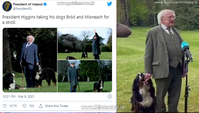 President of Ireland's dog interrupting his address to play (Video)