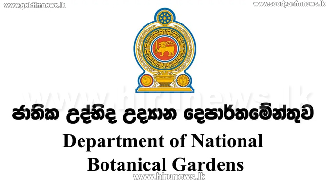 Govt to develop the floriculture