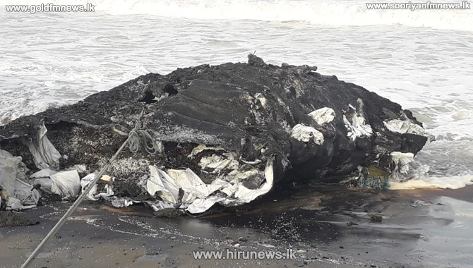 250+kg+iron+buoy+washed+ashore+-+Suspected+to+be+from+MV+X-Press+Pearl+%28Video%29
