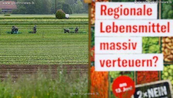 Referendum in Switzerland to ban artificial pesticides