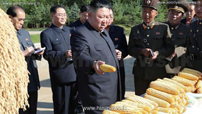 Children+and+elderly+in+North+Korea+at+risk+of+starvation