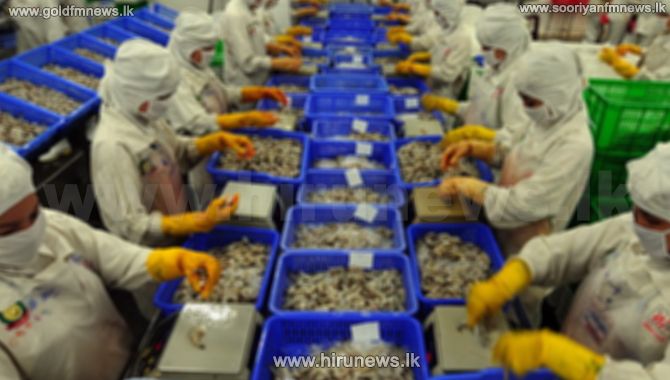 Fisheries export revenue $110 more than fish imports