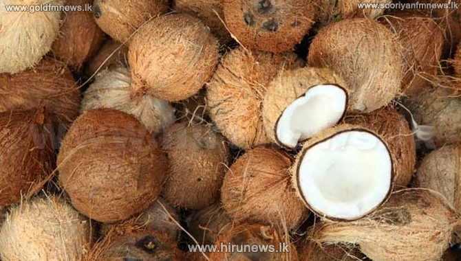 Drop in coconuts and tea submitted for auctions